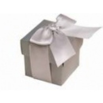 Favor Box - 2pc - 50pk  - Silver