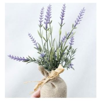 Potted Lavender in Burlap Bag with Raffia Tie - Style 1