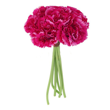 Carnation Bouquet Small - Fushia