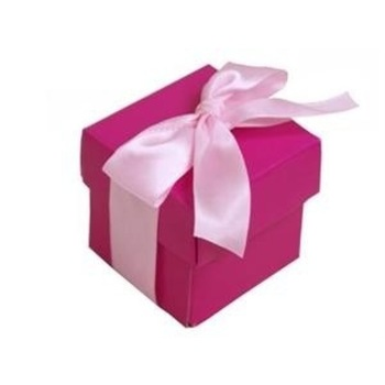 50pk 2pc Favor Box  Fushia