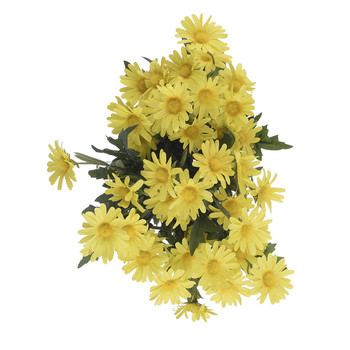 Daisy Small Filler Bunch - Yellow