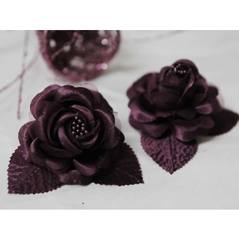 12 ACCENT Bellissimo Craft Roses - Egg Plant