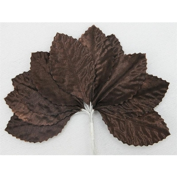 144 Burning Passion Leafs for Craft - Chocolate