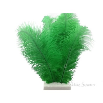 32-38cm 12pk  Ostrich Feathers - Green