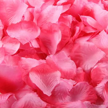 Rose Petals  - Pink w/ Fushia Tips -100pk