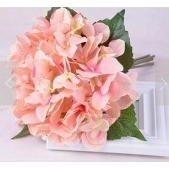Hydrangea Bouquet 6 Stem Peach/Pink